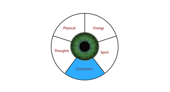 How emotions affect vision
